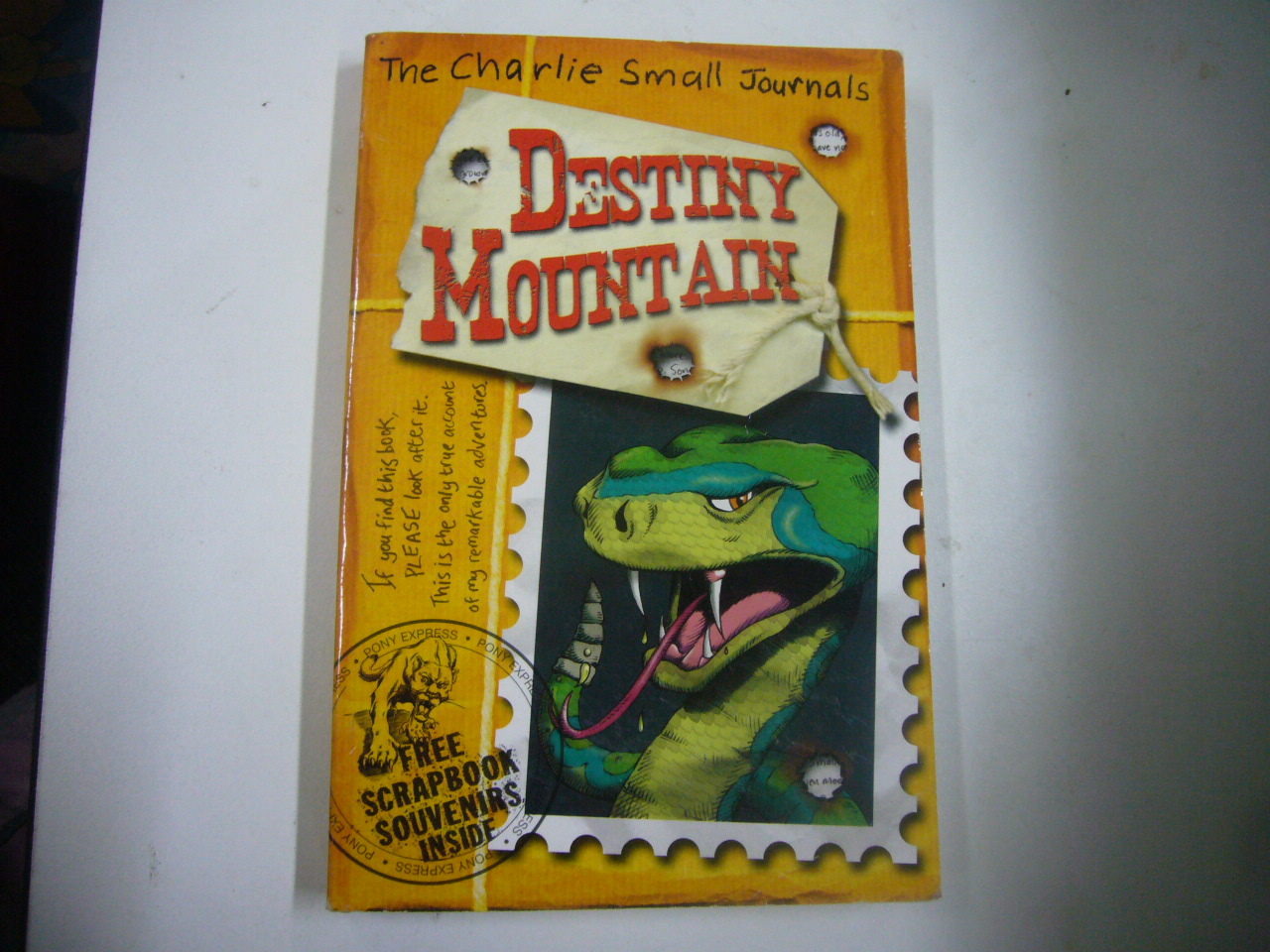 Destiny Mountain (The Charlie Small Journals)