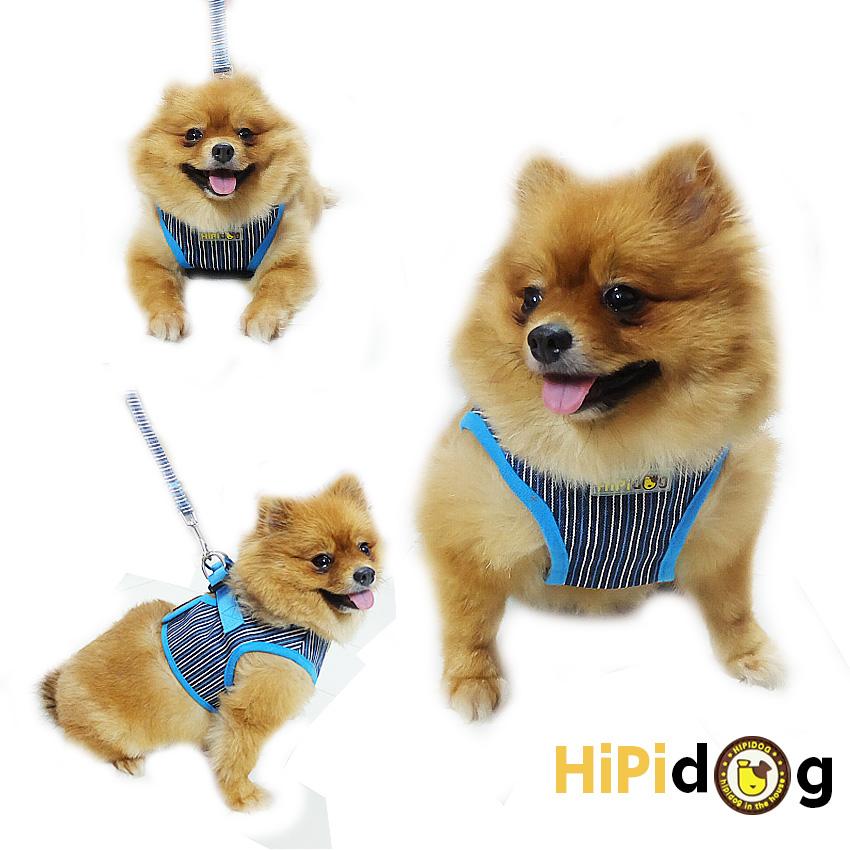 HIPIDOG สายจูงสุนัข เสื้อจูงสุนัข ลายตรง สีน้ำเงิน