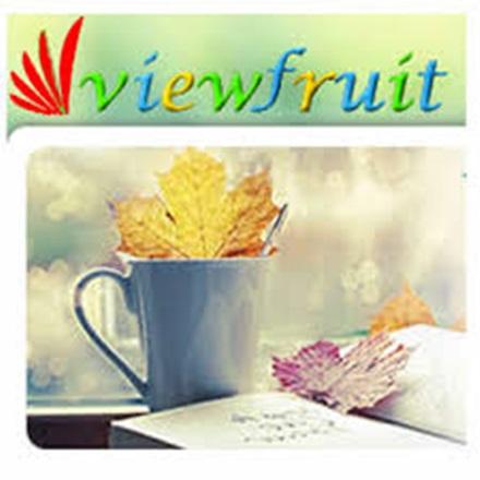 Viewfruit เว็บตอบแบบสอบถามออนไลน์ แต่จ่ายจริงแน่นอน